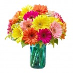 send Gerberas Flower in Vase delivery