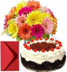 send Bouquet of Mixed Gerberas and Half kg Eggless Black Forest Cake delivery