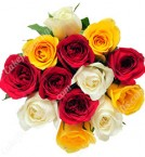 send 12 fresh mixed roses bouquet  delivery