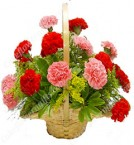 send Mix Carnations flower basket delivery