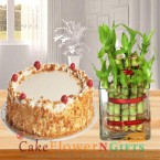 send lucky bamboo plant and half kg butterscotch cake delivery