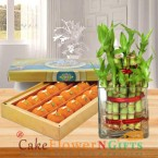 send lucky bamboo plant and half kg desi ghee laddu delivery