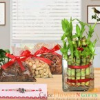 send half kg dry fruit rakhi n 2 Layer Lucky Bamboo Plant delivery