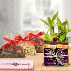 send half kg dry fruit rakhi n chocolate n 2 layer lucky bamboo plant delivery