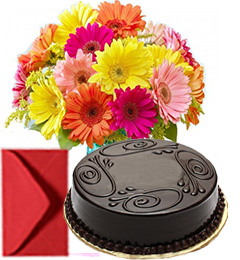 Bouquet Of Mixed Gerberas And Half Kg Eggless Chocolate Cake