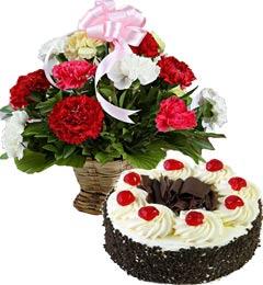 Black Forest Cake Half Kg N Carnations Basket