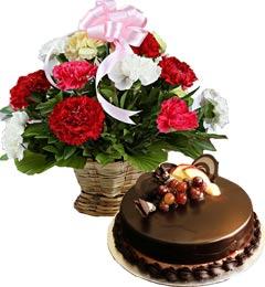 Chocolate Truffle Cake Half Kg N Carnations Basket