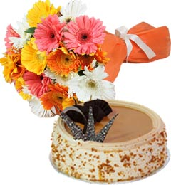 Butterscotch Cake Half Kg N Gerberas Bouquet
