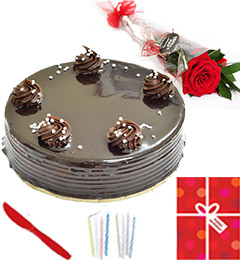 1Kg Chocolate cake Single Roses Candle Greeting Card