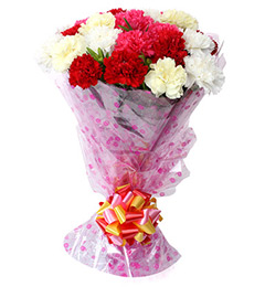 10 Mix Carnation Flower Bouquet
