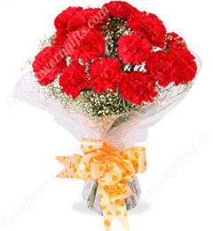 10 Red Carnations Bouquets