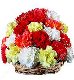 15 Red Carnations flower basket