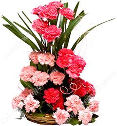 Carnations flower basket