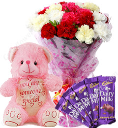 Gift of 10 Carnation Bouquets Chocolate Teddy Bear