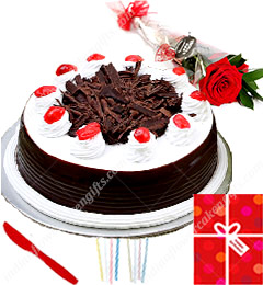 1Kg Black Forest cake Single Roses Candle Greeting Card