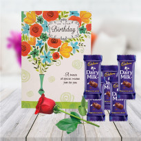 1 Rose 1 Card 5 Chocolate