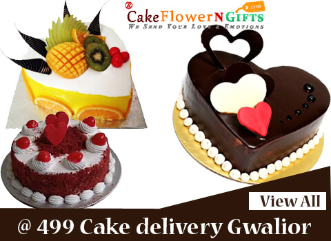 cake delivery services in gwalior