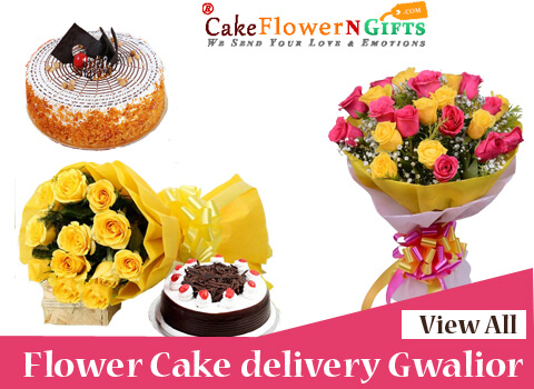 best online cake delivery in gwalior